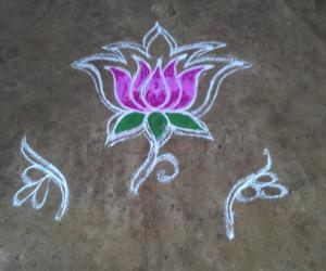 Rangoli: Lotus daily Rangoli