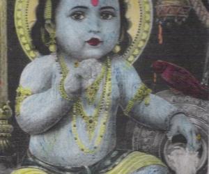 Rangoli: Krishnajayanthi