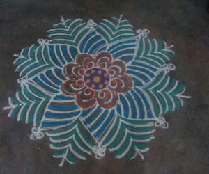 Designer saree kolam