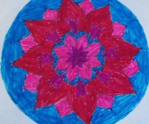 FlowerPatch- lotus