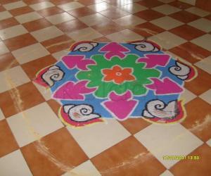 Rangoli: FESTIVAL RANGOLI