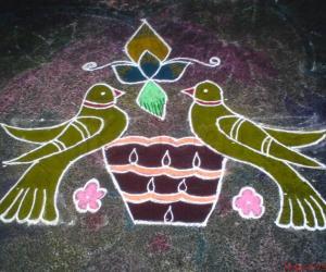 Parrot Kolam