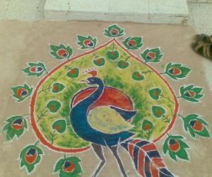 Diwali Rangoli - colorful peacock