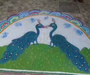 my peacocks - contest
