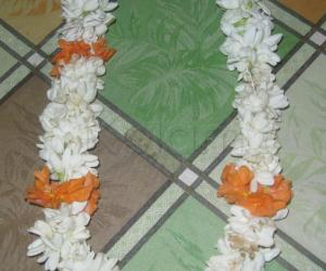 Rangoli: Jasmine Flower from our yard