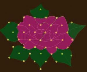 Rangoli: Bloomed Rose