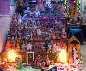 golu at our home in mumbai 2018