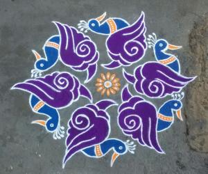 Rangoli: sanghu peacock