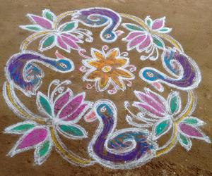 Rangoli: beauty swans
