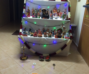 Our house golu 2014