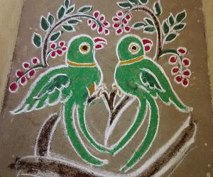 Rangoli: Parrots rangoli