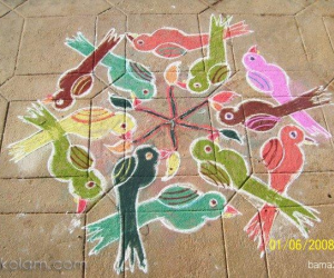 Rangoli: Group of birds rangoli