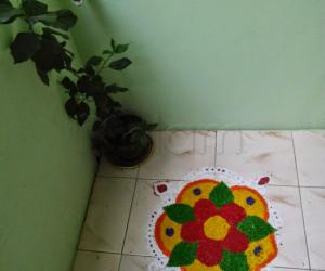 Rangoli: Rangoli using colored rice