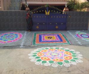 Rangoli: RANGOLI FOR THE DAY OF MATTU PONGAL (2013)