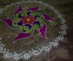 Rangoli: Parrots in tulips
