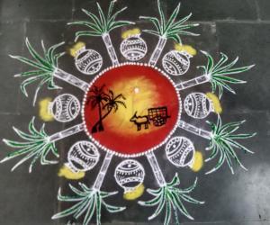 Sankranthi /pongal