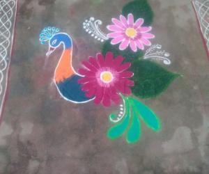 Rangoli: Peacock kolam