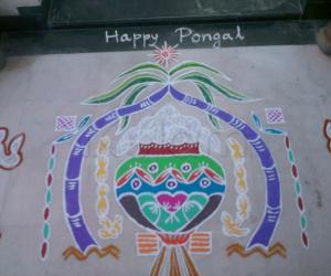 Pongal traditional kolam