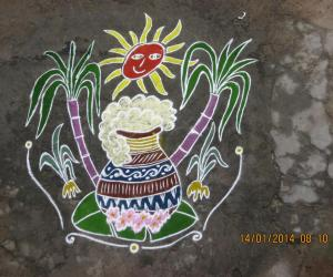 Rangoli: Pongal 1