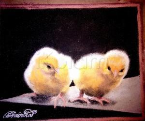 Rangoli: Chicken