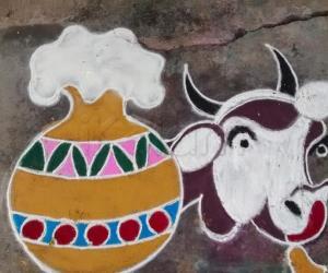 Rangoli: Maatu Pongal special