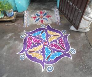 Colour Colour Butterflies Kolam.