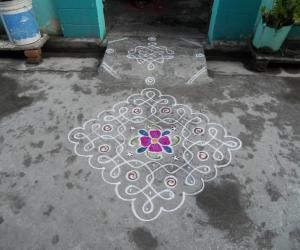 Chikku kolam with flower.