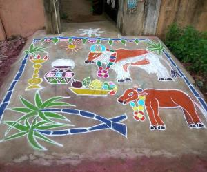 Rangoli:  Mattu Pongal kolam