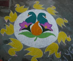 Rangoli: Flock of birds rangolii