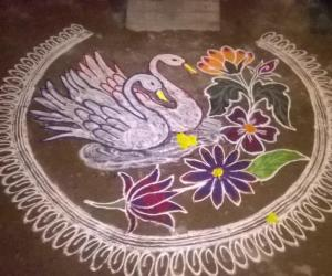 Rangoli: Swan rangoli