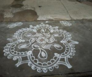 Peacock kolam for Panguni Uthiram