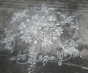 Chikku kolam with lotus