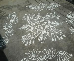 Simple peacock kolam