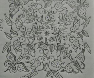 Birds and butterflies...