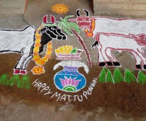 HAPPY MATTU PONGAL 2019