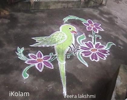 Rangoli: Parrot