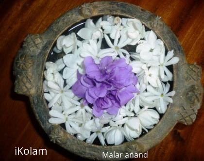 Rangoli: Violet Flowers