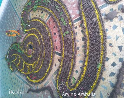 Rangoli: Shiv Parhiv Ling