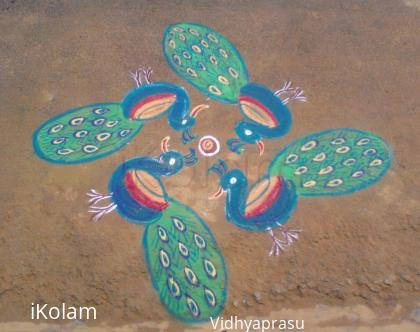 Rangoli: Lovely peacocks by my neighbour