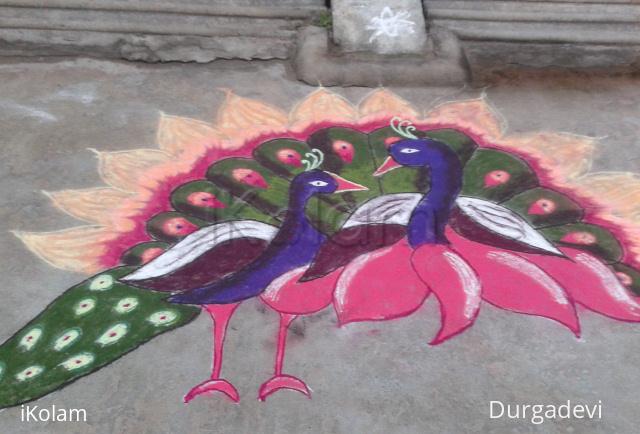 Rangoli: peacock marghazhi kolam