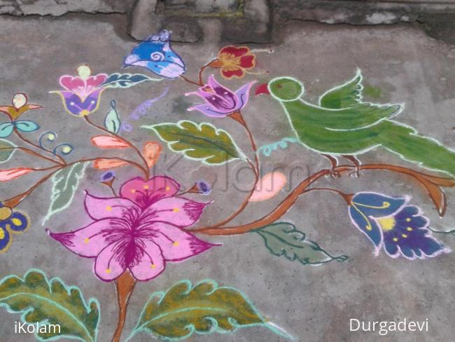 Rangoli: DD parrot kolam