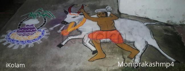 Jallikattu Rangoli Www Ikolam Com