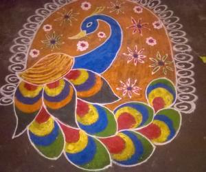 Rangoli: colourful peacock