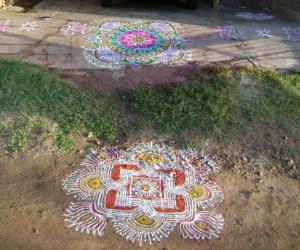 Rangoli: kolams for pongal