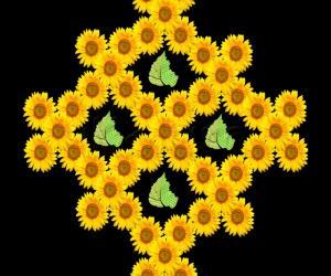 sunflower - let