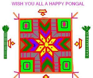 Rangoli: Pongal greetings