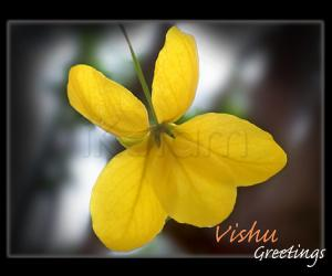 Rangoli: Eniya Puthandu Vazhthukkal.  Happy vishu to all of ikolam members and all people in the world  who visit this site