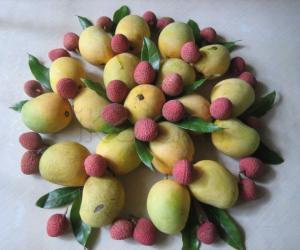 Rangoli: Mixed fruit dessert