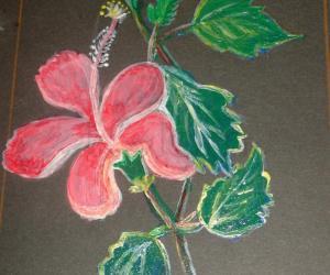 Rangoli: Hibiscus