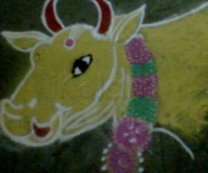 Rangoli: cow in pongal kolam